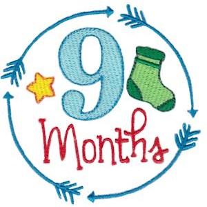 Baby Milestones 9