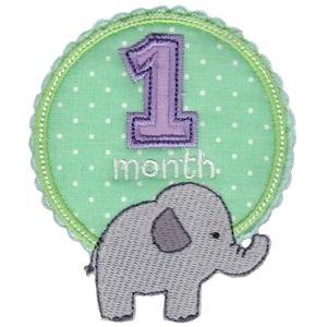Baby Months Applique 1