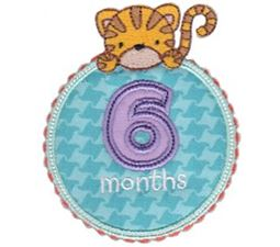 Baby Months Applique 6