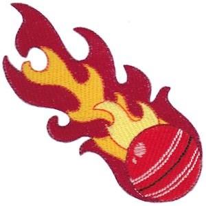 Cricket 12