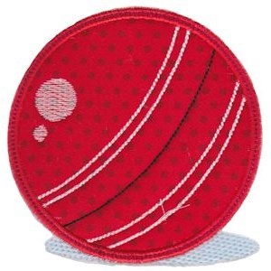 Cricket 4