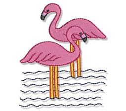 Flamingos 7