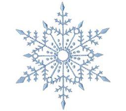 Snowflakes Too 10