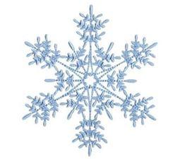 Snowflakes Too 14