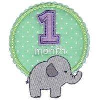 Baby Months Applique