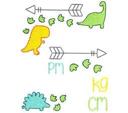 Dinosaur Birth Announcement Metric pm