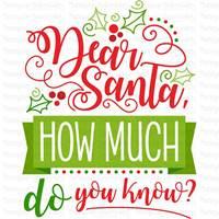 Christmas Naughty List SVG