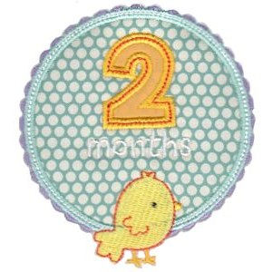 Baby Months Applique 2