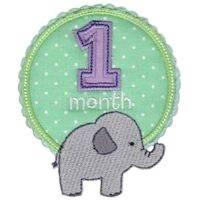 Baby Months Applique