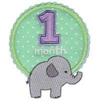 Embroidery Design Set - Baby Months Applique