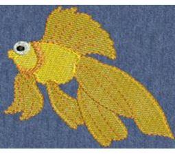 Fishies 6