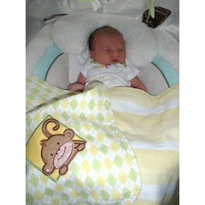 Lyns Monkey and Friends Blanket