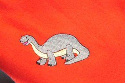 Lauras Dino Blanket