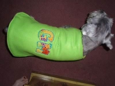 Jeans Doggie Dos