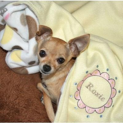 Kathys Lots of Dots Dog Blanket