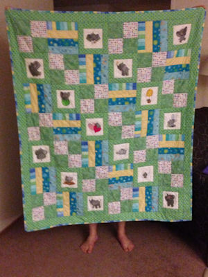 Robyn Baby Elephant Quilt